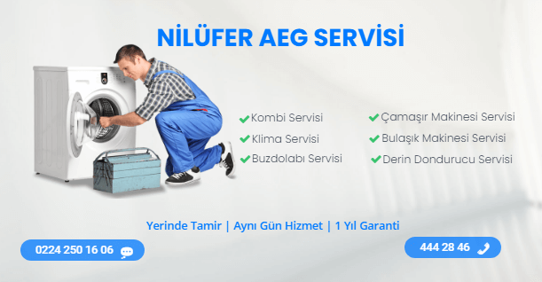 Nilüfer AGE Servisi