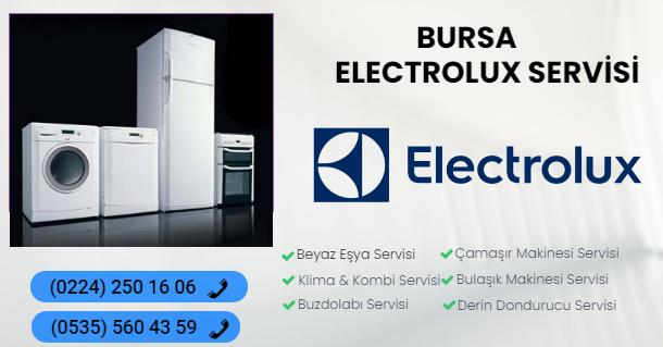 bursa electrolux servis