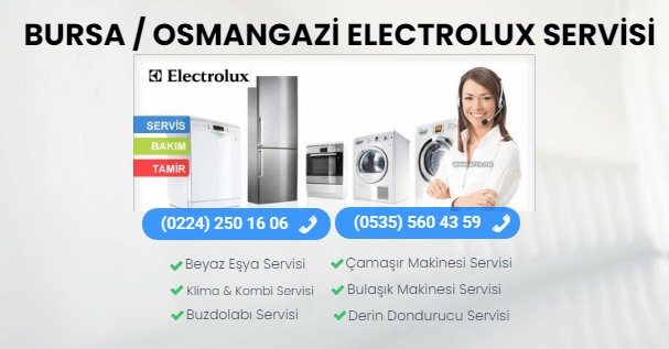 osmangazi electrolux servis